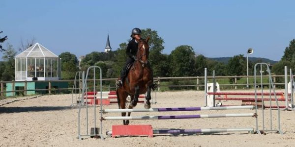 Résultats du concours HUNTER & CSO du Dimanche 05 Septembre à Equitation Passion